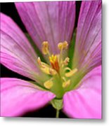 Purplesmile Metal Print