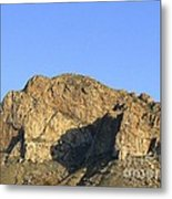 Pusch Ridge With Saguaro Metal Print
