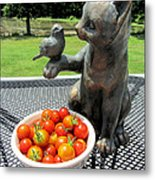 Pussycat And Tomatoes Metal Print
