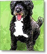 Pw Dog Metal Print