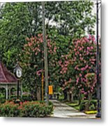 Quaint Park In Demopolis Alabama Metal Print