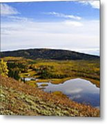 Quartz Lake Recreation Area Metal Print