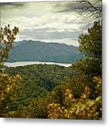 Queen Charlotte Sound Metal Print