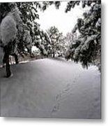 Queen City Winter Wonderland After The Storm Series 0030 Metal Print