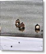 Queen City Winter Wonderland After The Storm Series 0043 Metal Print