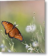 Queen In Morning Light Metal Print