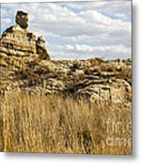 Queen Of Isalo  Madagascar Metal Print