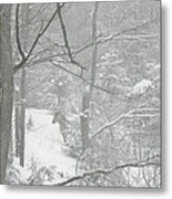 Querida In The Snow Storm Metal Print