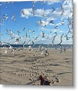 Quick Fly Away Metal Print