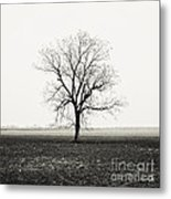 Quiet Desperation Metal Print