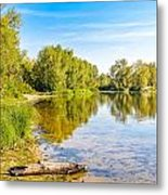 Quiet River With Trees Metal Print