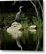 Quiet Waters Metal Print