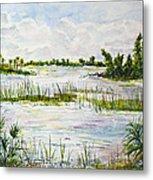 Quiet Waters Park Deerfield Beach Fl Metal Print