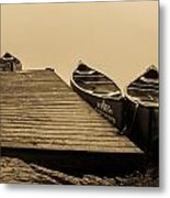 Quietly Resting Metal Print