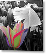 Quilted-look Tulip Gets A Nod From A Daffodil Metal Print
