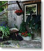 Rabbit Hash Morning Metal Print