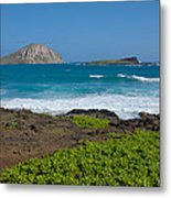 Rabbit Island Metal Print