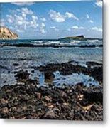 Rabbit Island Tide Pools Metal Print