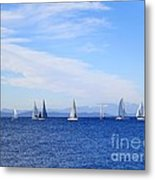 Race In Point Roberts Metal Print