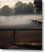 Race Of The Deere's Metal Print
