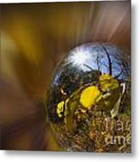 Radial Fall Metal Print