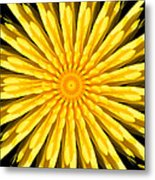 Radial Love Metal Print