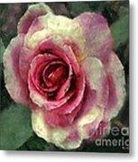 Ragged Satin Rose Metal Print