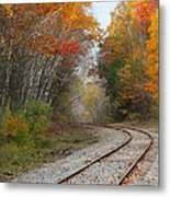 Rail Through The Colors Metal Print