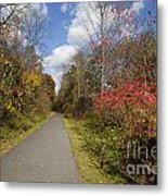 Rail Trail Metal Print