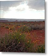 Rain At Monument Valley Metal Print by Heather Coen