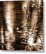 Rain Drops On Water Metal Print