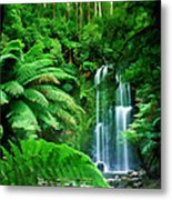 Rain Forest And Waterfall Metal Print