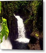 Rain Forest Grotto With 2 Waterfalls Metal Print
