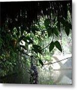 Rain Forest Overhang Metal Print