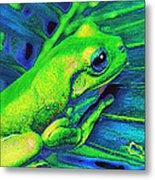 Rain Forest Tree Frog Metal Print