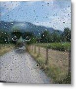 Rain Is Watching Metal Print