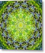 Lluvia Mandala Metal Print