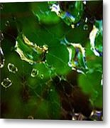Web Drops Metal Print