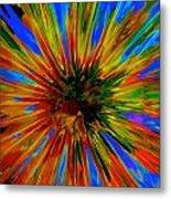 Rainbow Exuberance Metal Print