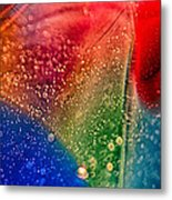 Rainbow Fishtail Metal Print
