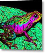 Rainbow Frog 3 Metal Print