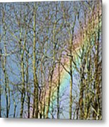 Rainbow Hiding Behind The Trees Metal Print