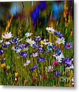 Rainbow Meadow Metal Print