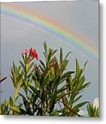 Rainbow Over Flower Metal Print