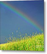 Rainbow Over Pasture Field Metal Print