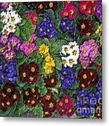 Rainbow Petals Metal Print