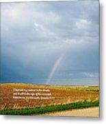 Rainbow Promise Metal Print