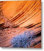 Rainbow Rocks Dead Bush #1 Metal Print