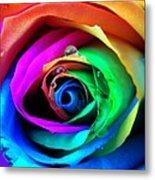 Rainbow Rose Metal Print by Juergen Weiss