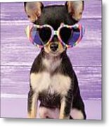 Rainbow Sunglasses Metal Print by Greg Cuddiford